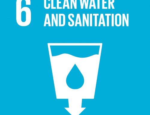 Forests and SDG 6: Clean water and sanitation
